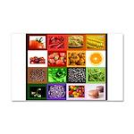 Rainbow Foods Car Magnet 20 x 12