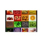 Rainbow Foods Rectangle Magnet (100 pack)