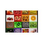 Rainbow Foods Rectangle Magnet