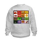 Rainbow Foods Kids Sweatshirt