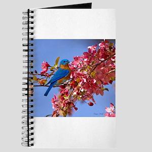 Bluebird in Blossoms Journal