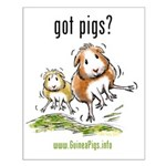 Got Pigs Small Poster