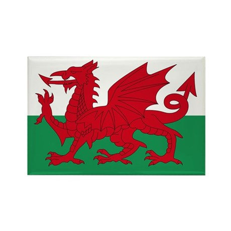 Welsh Red Dragon Rectangle Magnet (10 pack)