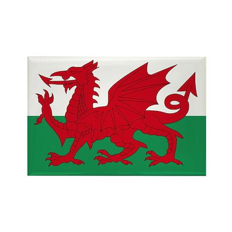 Welsh Red Dragon Rectangle Magnet