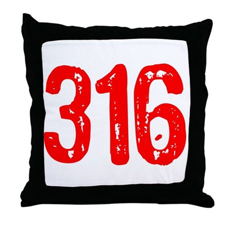 316 Throw Pillow