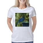 Jay & Jenny Women's Classic T-Shirt