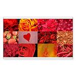 Stylish Red Photo Collage Sticker (Rectangle 50 pk