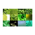 Green Photography Collage 38.5 x 24.5 Wall Peel