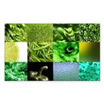 Green Photography Collage Sticker (Rectangle 10 pk