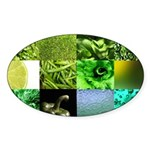 Green Photography Collage Sticker (Oval)