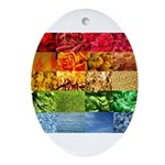 Rainbow Photography Collage Ornament (Oval)