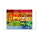 Rainbow Photography Collage 22x14 Wall Peel