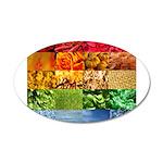 Rainbow Photography Collage 22x14 Oval Wall Peel