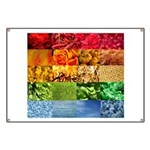 Rainbow Photography Collage Banner
