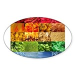 Rainbow Photography Collage Sticker (Oval)