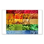 Rainbow Photography Collage Sticker (Rectangle)