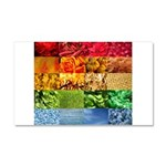 Rainbow Photography Collage Car Magnet 20 x 12