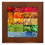 Rainbow Photography Collage Framed Tile