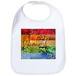 Rainbow Photography Collage Bib