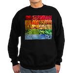 Rainbow Photography Collage Sweatshirt (dark)