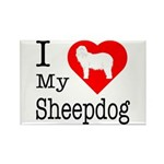 I Love My Bearded Collie Rectangle Magnet (10 pack