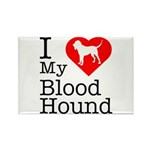 I Love My Bloodhound Rectangle Magnet