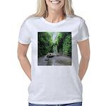 Fern Canyon Women's Classic T-Shirt