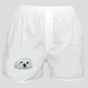 Bogart the Maltese Boxer Shorts