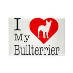 I Love My Bullterrier Rectangle Magnet (10 pack)