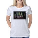 Fall Forest Women's Classic T-Shirt