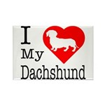 I Love My Dachshund Rectangle Magnet (10 pack)