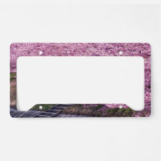 Unique Cherry blossoms License Plate Holder