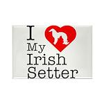 I Love My Irish Setter Rectangle Magnet (10 pack)