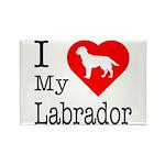 I Love My Labrador Retriever Rectangle Magnet