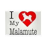 I Love My Malamute Rectangle Magnet