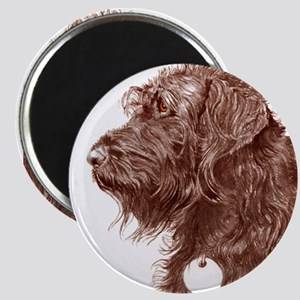 Chocolate Labradoodle 4 Magnet