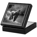 Silverback Gorilla Keepsake Box