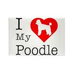 I Love My Poodle Rectangle Magnet (10 pack)
