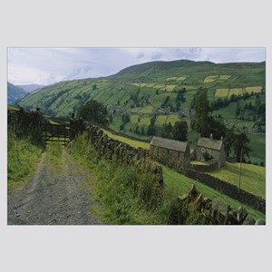 Houses on a landscape, Swaledale, North Yorkshire,