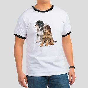 Tibetan Mastiff puppies Ringer T