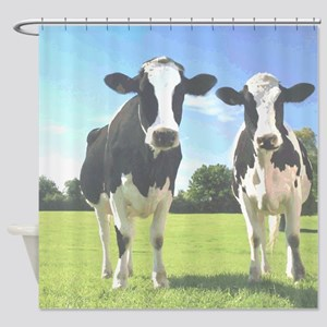 Holstein Cows Shower Curtain