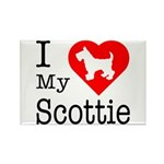 I Love My Scottish Terrier Rectangle Magnet (100 p