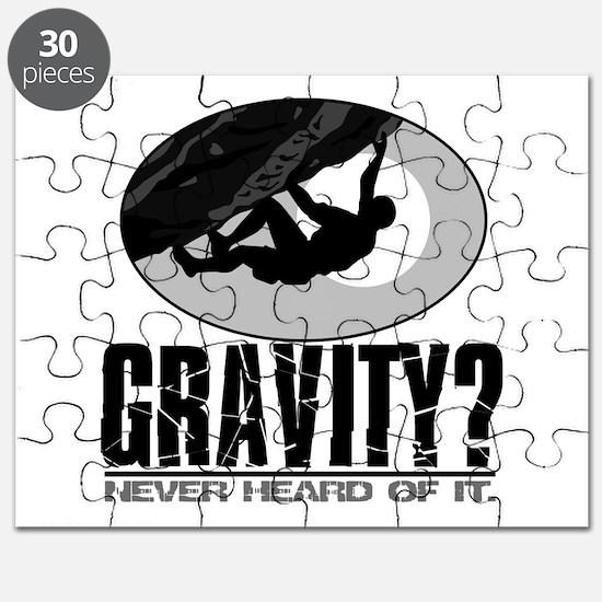 Gravity? Rock Climber Puzzle