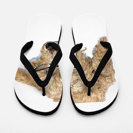 Goldendoodle Stella Flip Flops