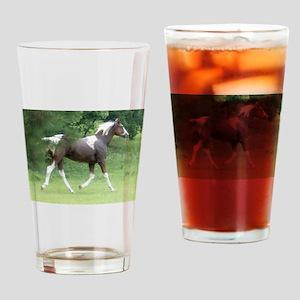 SCARE Drinking Glass Seminole