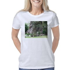 Eucalyptus Tree Women's Classic T-Shirt