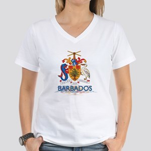 3D Barbados Women's V-Neck T-Shirt