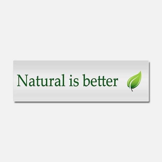 Natural ~ Car Magnet 10 x 3