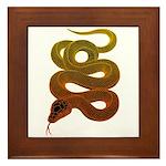 snake Framed Tile