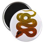 snake Magnet